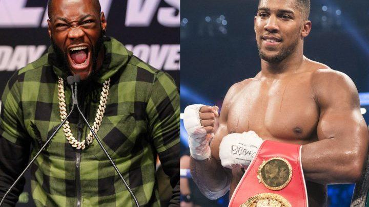 Wilder: I Can't Say That I'll KO Joshua Or Joshua Will KO Me